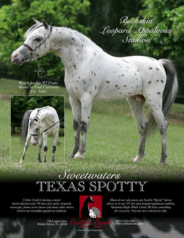 Texas Spotty Ad